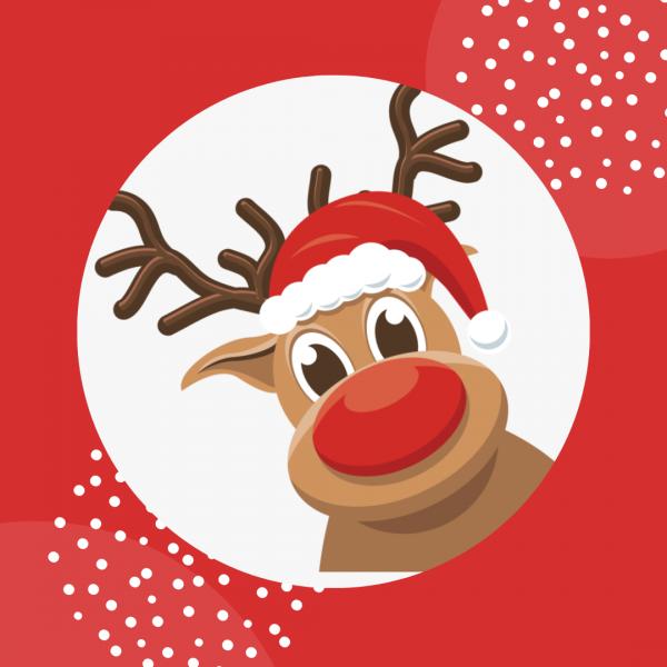 reindeer dance package